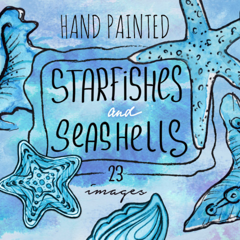clipart sea stars and seashells free download png elements on transparent background