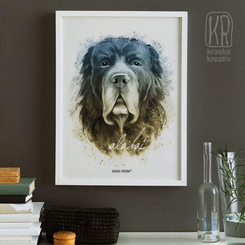 стильный animal art постер с мордой собаки - «Alabai Dog» / «Алабай» - от Красных Катерины